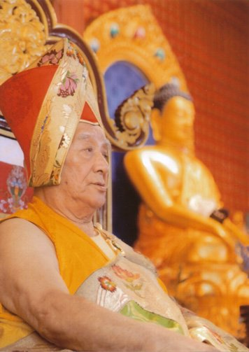 Rinpoche and the Buddha